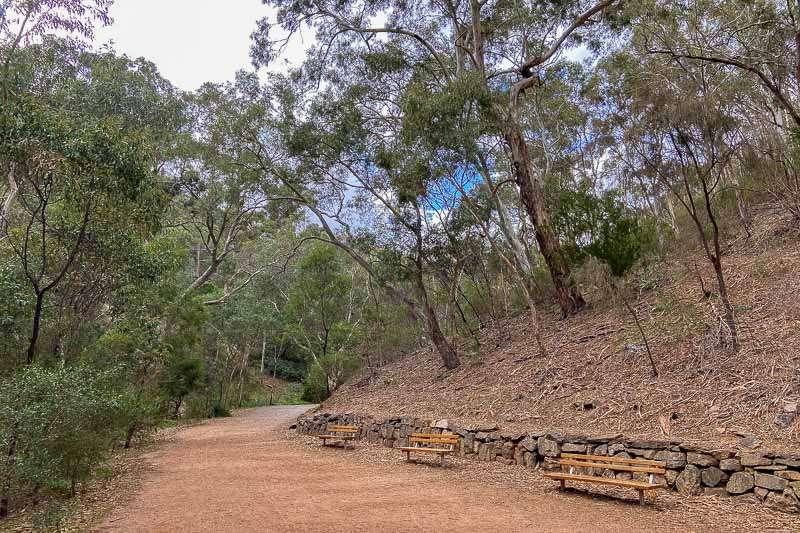 5 Best Walks in Adelaide